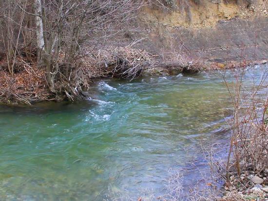 Севастополь в суде проиграл частнику одну из рек