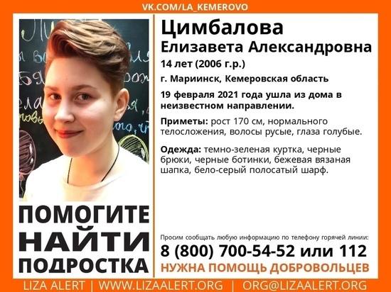 В Кузбассе волонтеры просят помощи в поисках без вести пропавшей 14-летней школьницы