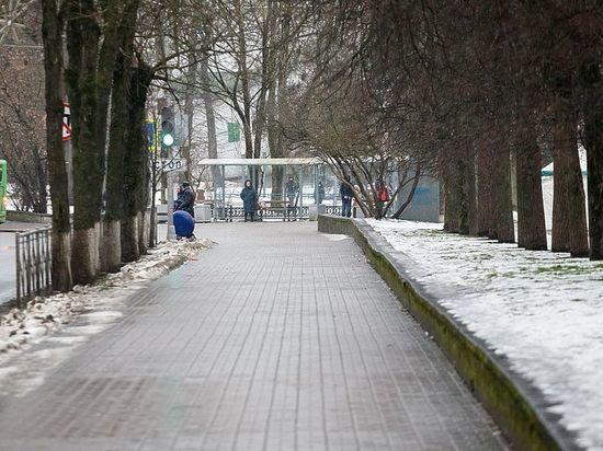 Последняя неделя зимы в Пскове будет мягкой