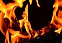 На пожаре на проезде Гоголя в Рязани спасли троих человек, есть пострадавшие