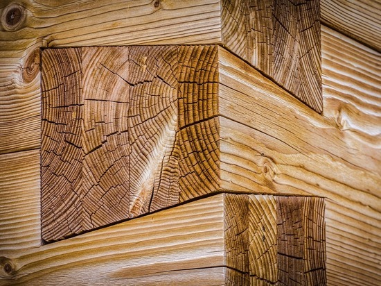 В Томске построят новый деревообрабатывающий завод-гигант на 600 рабочих мест