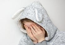 В Гатчинском районе Ленинградской области расследуется уголовное дело по факту изнасилования школьницы