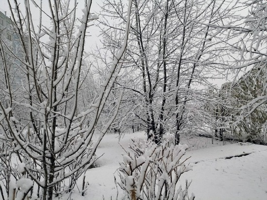 Погода во Владивостоке на 23 февраля 2021 года