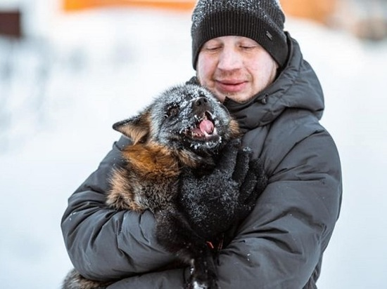 Томский кинолог выходил чернобурого лисенка-потеряшку