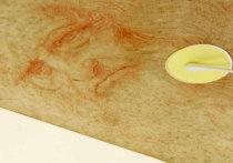 Ученые разгадали «код Леонардо да Винчи»