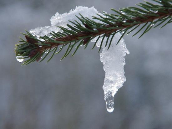 Плюсовая температура ожидается 24 февраля в Пскове