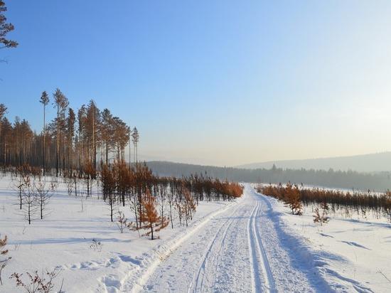 Морозы до 40 градусов спрогнозировали в Забайкалье 24 февраля