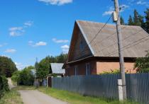 Власти Бийска продолжают судебные тяжбы с МЧС, которые требуют хорошенько проредить леса в районе Заречья