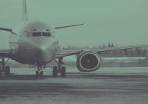 Рейсы из Москвы и Санкт-Петербурга ушли в Новосибирск из-за снежной пурги