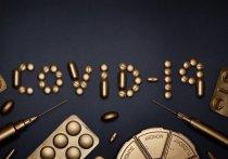 Глава правительства Чехии Андрей Бабиш назвал чрезвычайно серьезной ситуацию с коронавирусом в стране
