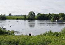 На расчистку 3 км русла реки Солотча в Рязани выделили 125 млн рублей