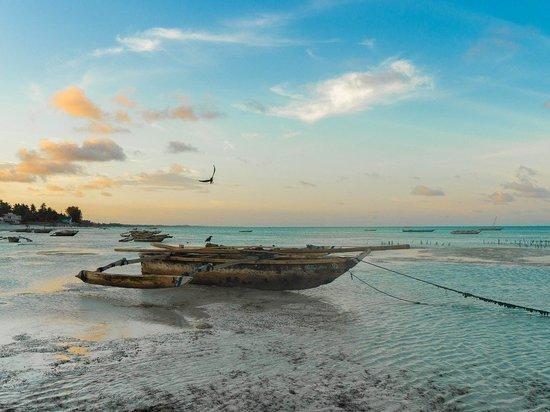 Россияне полюбили Занзибар «на безрыбье» - за то, что танзанийские берега одни из немногих открыли нам доступ к океану в разгар пандемии
