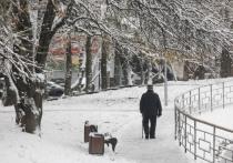 Главной причиной холодной зимы признан вихрь из стратосферы