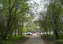 В Перми будет проведена экологическая экспертиза участка за ДКЖ