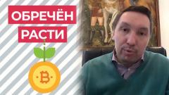 Интернет-омбудсмен объяснил почему биткойн не подвержен инфляции
