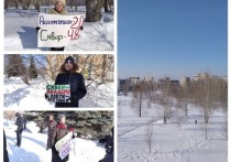 Заксобрание Новосибирской области подключилось к обсуждению продажи сквера в Академе