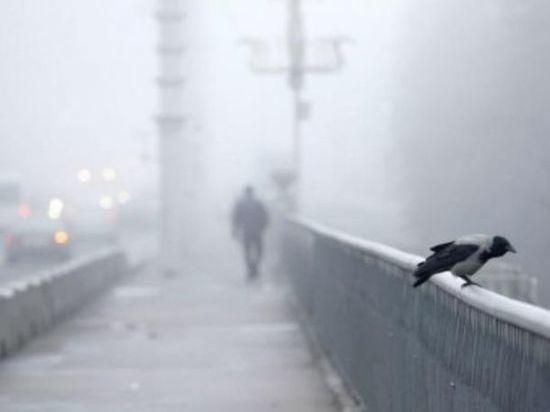В Ростове в ближайшие несколько дней прогнозируется туман и гололед