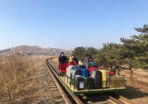 Российские дипломаты вернулись во Владивосток из Кореи на дрезине