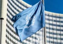 ООН отдала владельцу гобелен