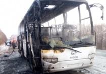 Полиция озвучила подробности о сгоревшем в Приморье автобусе