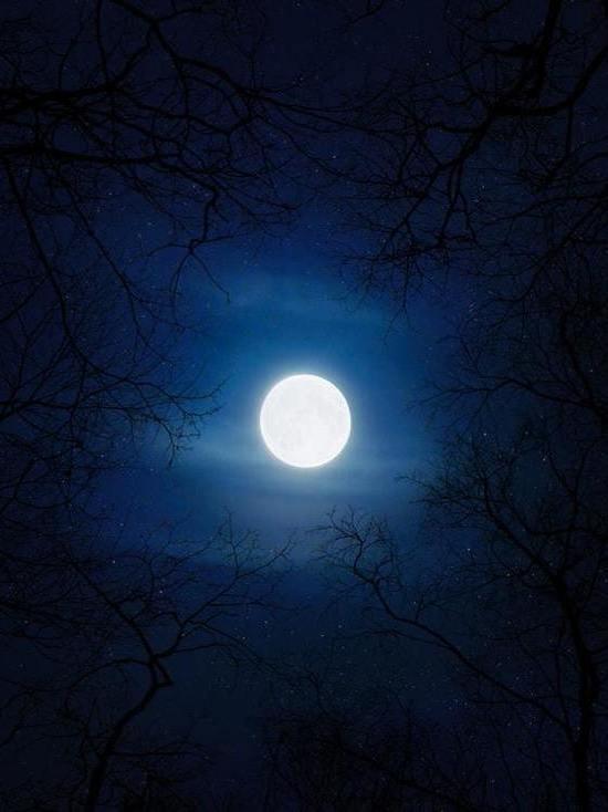 Снежная Луна: чем опасно полнолуние 27 февраля и как его пережить