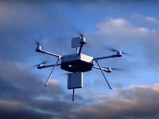 Украинская армия на Донбассе собралась использовать дроны-камикадзе