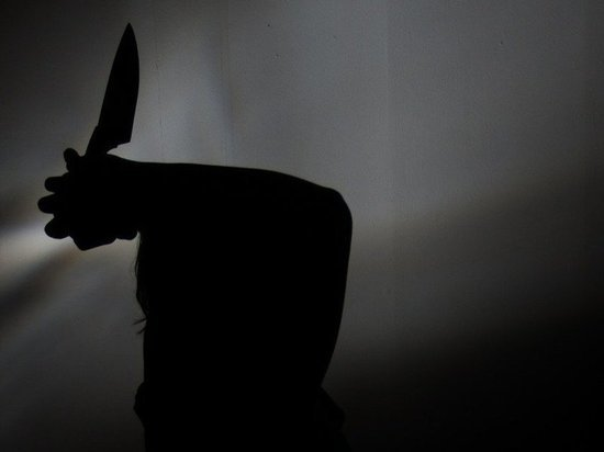 В Ленобласти очередной расчленитель закопал мать в лесу по кускам