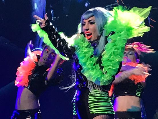 Певица Леди Гага готова заплатить $500 тыс за возвращение похищенных у нее в Лос-Анджелесе двух собак
