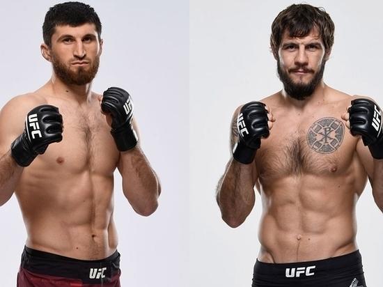 Драка двух русскоговорящих бойцов: анонс жаркого турнира UFC