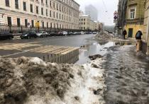 Слякость, лужи и гололед: синоптики озвучили прогноз для Петербурга до начала марта
