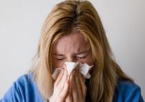 На носу март, а в России до сих пор нет эпидемии гриппа