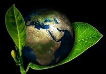 Охрана окружающей среды при ведении хозяйственной деятельности – абсолютный стандарт наших дней, знаковый элемент корпоративной культуры
