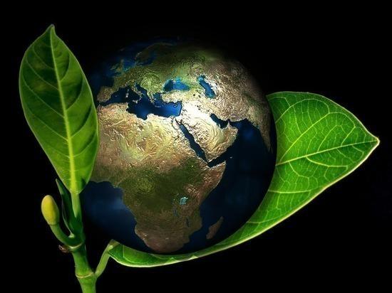 «Роснефть» рассказала о своей работе по снижению выбросов парниковых газов