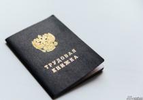 С 2023 года в РФ могут ввести трудовые книжки нового образца, сообщает «Российская газета», ссылаясь на подготовленные в Минтруде документы