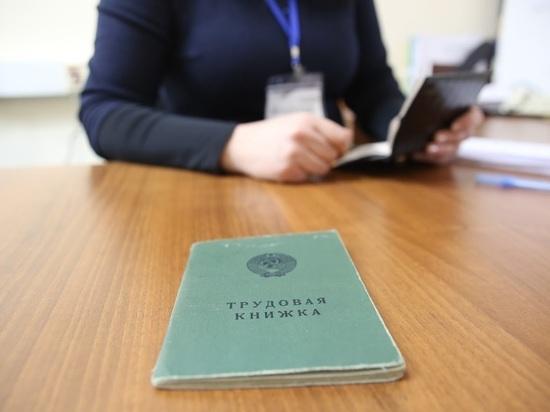 Минтруд намерен ввести новые трудовые книжки