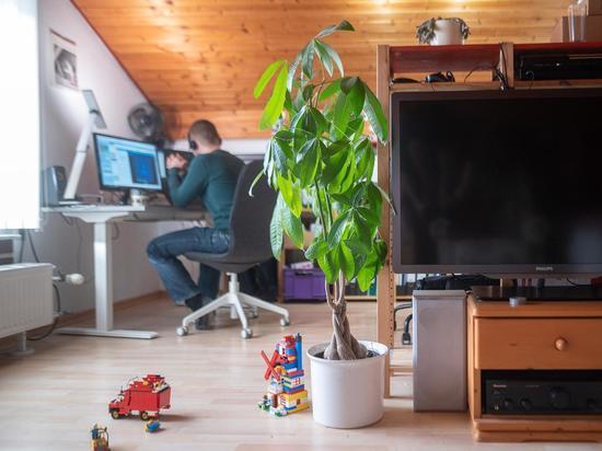 Германия: Власти контролируют правила домашнего офиса