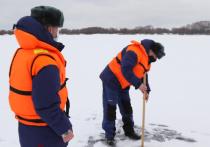 Рязанские спасатели измерили толщину льда на водоемах после потепления