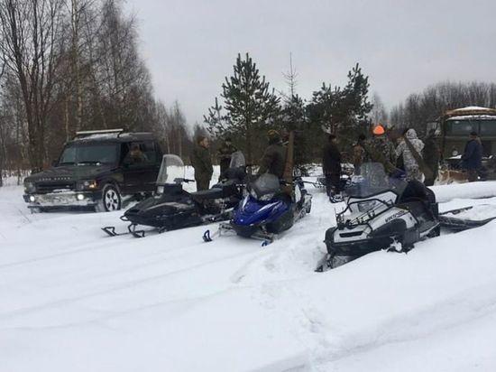 Охотники-садисты задушили лосиху на видео в Тверской области
