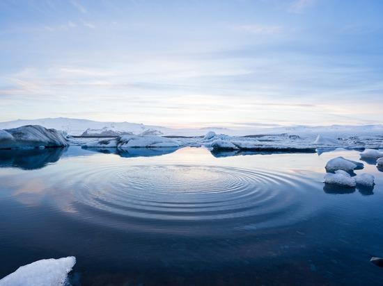 Ученые: к концу века в Арктике станет теплее на 20 градусов