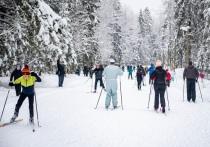 «Нетающая лыжня» открылась: на масс-старт вышло около полутысячи человек