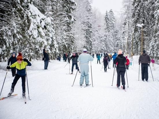 «Нетающая лыжня» открылась: на масс-старт вышло около полутысячи человек. ВИДЕО, ФОТО