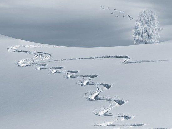 Российские лыжники выиграли бронзу чемпионата мира