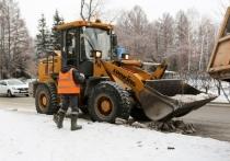 В Омске для уборки снега привлекут более 400 единиц техники