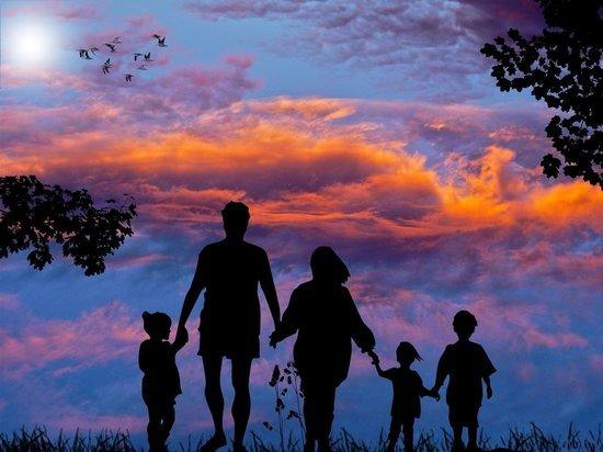 Многодетные семьи могут освободить от уплаты налога на имущество