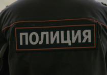 В Москве возбуждено уголовное дело по факту сексуального насилия над малолетней девочкой, которое произошло с одобрения ее матери