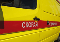 Московская одиннадцатиклассница, круглая отличница и спортсменка в минувшую пятницу покончила с собой во время занятия химией