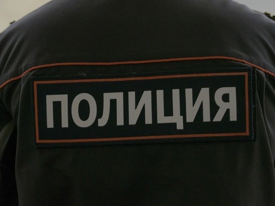 Под Рязанью до смерти забили Александра Сергеевича Пушкина в юбке