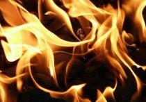 Пожар в квартире в подмосковном Подольске, где погибла трехлетняя девочка, мог начаться из-за зажигалки