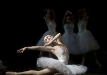 4 марта 1877 года в Москве на сцене Большого театра публике впервые был показан балет «Лебединое озеро»