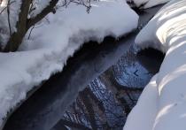 На острове Бревенник в Архангельске коммунальщики сбрасывают жидкие отходы прямо в реку